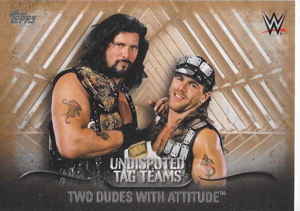 2016 Topps WWE Undisputed Tag Team Sample